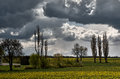 Clouds over rape field Royalty Free Stock Photo