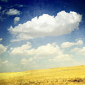 Clouds Over Yellow Fields (grunge image) Stock Photos