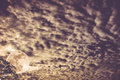 Cloudscape. Nightly sky with moon behind tree. Outdoors at night Royalty Free Stock Photo
