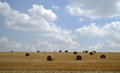 Cloudy sky and golden field after harvesting Stock Photo