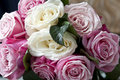 Clouse-up of white roses and pink mottled Royalty Free Stock Photos