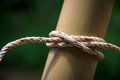 Clove hitch knot a rope tied into a Royalty Free Stock Photos