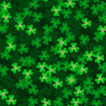 Clover background Stock Photos