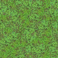 Clover Field Seamless Pattern Stock Photos