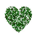 Clover heart Royalty Free Stock Photo