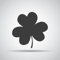 Clover icon with shadow on a gray background. Vector illustration