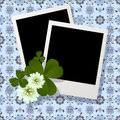 Clover leaf and flowers design Royalty Free Stock Images