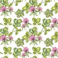 Clover leaf and flowers hand drawn seamless pattern watercolor illustration. Happy Saint Patricks Day. Royalty Free Stock Photo