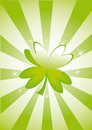 Clover leaf on striped background Royalty Free Stock Photo