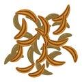 Cloves icon, cartoon style