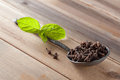 Cloves spices and mint Royalty Free Stock Images