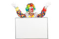 Clown with blank board on white Stock Photo