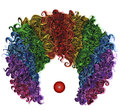 Clown colorful wig hair funny attire. Royalty Free Stock Photo