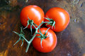 Cluster of tomatoes a ripe red on a wooden table Royalty Free Stock Images