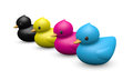 Cmyk rubber duck playful symbolic toy a set of funny dressing with c processing printing ink colors Royalty Free Stock Photo