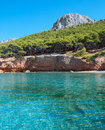 Coast of an aegean island with turquoise waters and conifer forest Royalty Free Stock Photography