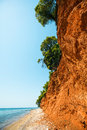 Coast of aegean sea with red ground and green pine trees Stock Photos