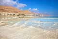 The coast of the dead sea in israel along shore with palm trees which are reflected in water path from evaporated salt Royalty Free Stock Images
