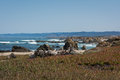 The coast of fort bragg california a view Royalty Free Stock Photo