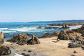 The coast of fort bragg california a view a beach along Royalty Free Stock Images