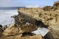 Coast of fuerteventura breakwater on the spain Stock Image