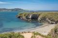 The coast of mendocino california a view Royalty Free Stock Photos