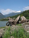 Coast mountains bella coola Royalty Free Stock Image