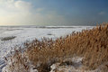 Coast of salt lake in utah winter day on the usa Royalty Free Stock Photography