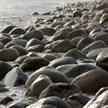 The coast, with stone boulders. Barents sea, Royalty Free Stock Photo