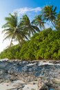 Coast of tropical island Stock Photos