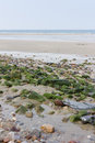 Coastal areas are filled stones with arranged Royalty Free Stock Photos