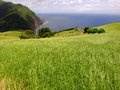 Coastal azores fields in s miguel island Royalty Free Stock Images