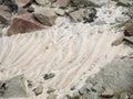 Coastal detail stony in brittany france Royalty Free Stock Photos