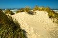 Coastal sand dune photographed on the oregon coast Royalty Free Stock Photos