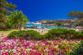 Coastline promenade with pine trees and tourquise clear water at Porto Cervo, Costa Smeralda, Sardinia, Italy Royalty Free Stock Photo