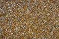 Coastline wet stones pattern background Royalty Free Stock Photo