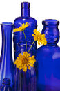 Cobalt blue bottles with flowers Royalty Free Stock Photo