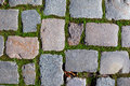 Cobbled pavement background Stock Images