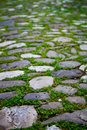 Cobbles with moss on a pavement in an old city Stock Photography