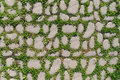 Cobblestone with a green grass Stock Images