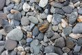 Cobblestone many river pebbles close up Royalty Free Stock Photo