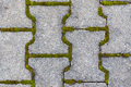 Cobblestone with moss. Royalty Free Stock Images