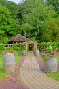 Cobblestone path to grape arbor a leads a and is flanked by wine barrels holding colorful flowers Royalty Free Stock Photography