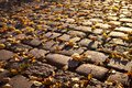 Cobblestone pavers in autumn,leafes,colourful Royalty Free Stock Photo