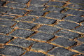 Cobblestone street detail Royalty Free Stock Image