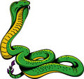Cobra snake a standing illustration Royalty Free Stock Image