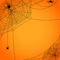 Cobweb with spiders yellow background Royalty Free Stock Photo