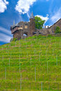 Cochem castle, Germany Royalty Free Stock Photos