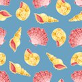 Cockleshells seamless pattern on the blue vector background Royalty Free Stock Photo