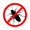 Cockroach in the prohibition sign Royalty Free Stock Photo
